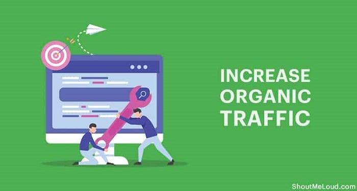 Tăng Organic Traffic