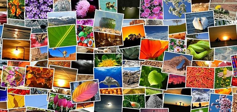 Sử dụng hình ảnh đẹp